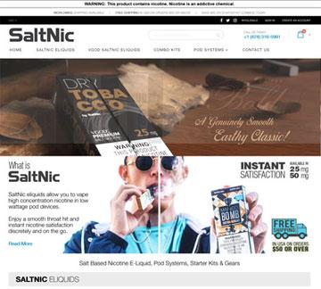 saltin - techievolve portfolio