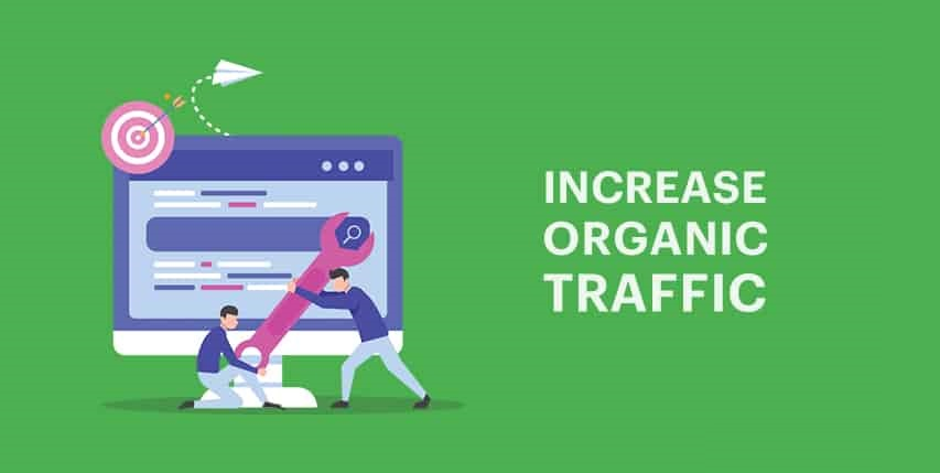 Increased organic searches Magento eCommerce website